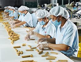 趣园食品—饼干生产线
